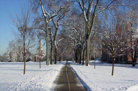 Example  -Tompkins Corporation Snow Removal | Snow Plower